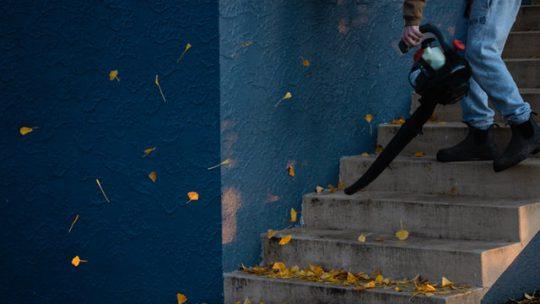 Zeg gedag tegen bladeren in jouw tuin